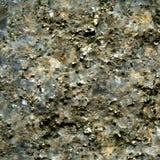 Textura del cristal de la pirita en cuarzo Foto de archivo libre de regalías