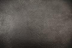 Textura del cuero auténtico Imágenes de archivo libres de regalías