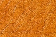 Textura del cuero genuino Fotografía de archivo libre de regalías