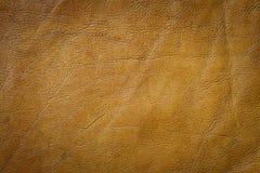 Textura del cuero genuino Fotos de archivo libres de regalías