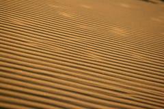 Textura del desierto Foto de archivo