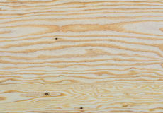 Textura del detalle de la madera contrachapada Fotografía de archivo