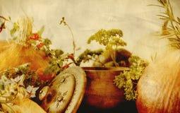 Textura del fondo con las calabazas, las zanahorias, las semillas, la calabaza moscada y las hierbas - todavía composición de la  Imagen de archivo
