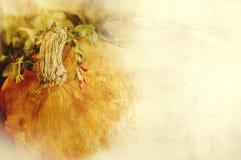 Textura del fondo con una calabaza y las hierbas - todavía composición de la vida - verduras estacionales del otoño Foto de archivo libre de regalías