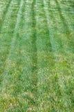 Textura del fondo de la hierba verde Golf o campo de fútbol Área del prado o del pasto el día de verano Naturaleza o ecología y a Foto de archivo libre de regalías