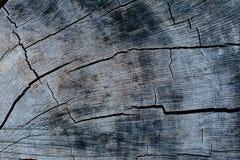 Textura del fondo de madera Imágenes de archivo libres de regalías