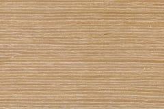 Textura del fondo de madera del modelo Fotos de archivo libres de regalías