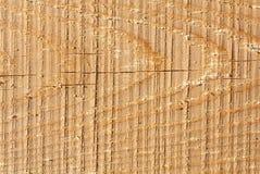 Textura del fondo de madera del modelo, textura del bajorrelieve Foto de archivo