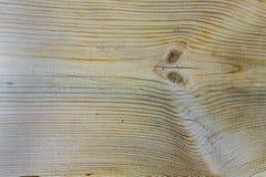 Textura del fondo de madera del modelo, textura de la superficie del árbol cortado Fotos de archivo libres de regalías