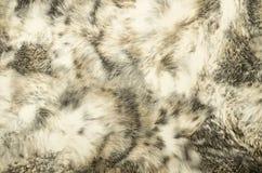 Textura del fondo del estampado de animales Imágenes de archivo libres de regalías