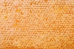 Textura del fondo del primer de la miel Imagenes de archivo