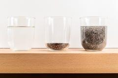 textura del gel de la semilla del chia fotos de archivo libres de regalías