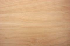 Textura del grano de madera de abedul de Taiga Fotos de archivo libres de regalías