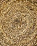 Textura del heno Imágenes de archivo libres de regalías