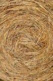 Textura del heno Foto de archivo