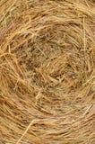 Textura del heno Fotografía de archivo