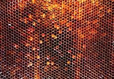 Textura del hexágono del fondo, panal de la cera Foto de archivo libre de regalías
