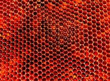 Textura del hexágono del fondo, panal de la cera Fotos de archivo libres de regalías