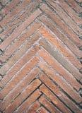 Textura del hueso de pescados de ladrillos rojos envejecidos fotos de archivo libres de regalías
