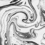 Textura del m?rmol del vintage Ilustraciones monocromáticas creativas Ejemplo decorativo hermoso ilustración del vector