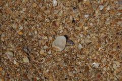 Textura del mar Imagen de archivo libre de regalías