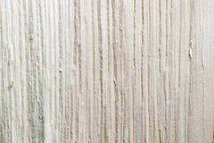Textura del modelo de madera de pino Imagen de archivo