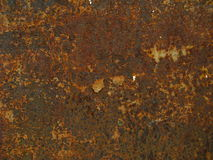 Textura del moho Fotografía de archivo