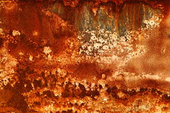 Textura del moho Foto de archivo
