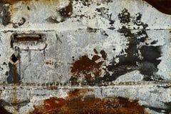 Textura del moho Fotos de archivo