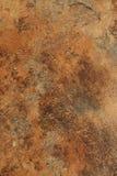 Textura del moho Imagen de archivo