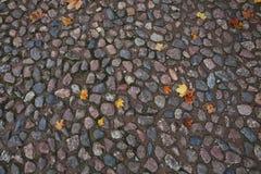 Textura del otoño de la piedra de pavimentación Fotos de archivo