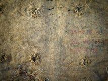 Textura del paño de saco Fotografía de archivo libre de regalías