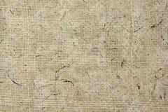 Textura del papel de la cartulina de la palma Fotos de archivo