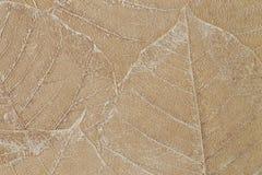 Textura del papel del diseñador de las hojas Foto de archivo libre de regalías