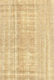 Textura del papiro Imágenes de archivo libres de regalías