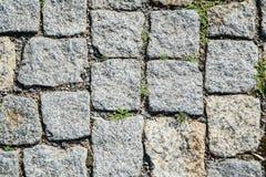 Textura del pavimento de mosaico Imagenes de archivo