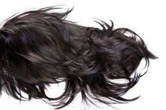 Textura del pelo Foto de archivo libre de regalías