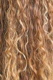 Textura del pelo rubio Fotos de archivo libres de regalías