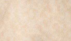 Textura del pergamino Imágenes de archivo libres de regalías