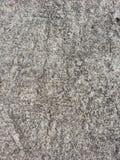 Textura del piso concreto Fotografía de archivo libre de regalías
