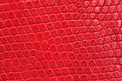 Textura del primer rojo del leatherette. Fotos de archivo
