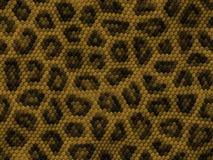 Textura del reptil foto de archivo libre de regalías