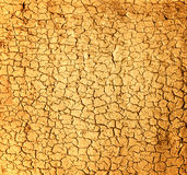 Textura del suelo seco Foto de archivo