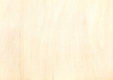 Textura del tablón de la madera contrachapada del abedul con el modelo de madera natural Fotos de archivo