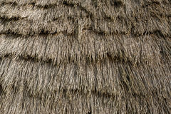 Textura del tejado cubierto con paja de la casa del viejo colono en la isla de Madeira Imagen de archivo