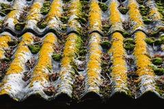 Textura del tejado viejo Foto de archivo