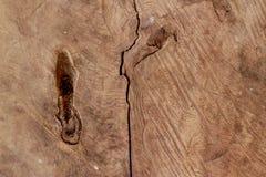 Textura del tocón de árbol Imagenes de archivo