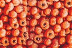 Textura del tomate, tomates rojos abstractos en el mercado, visión superior ilustración del vector