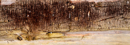 Textura del viejo fondo de madera de la cerca Foto de archivo