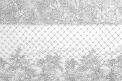 Textura Desenho Fundo Tela de prata do laço Você caiu no lo Imagens de Stock
